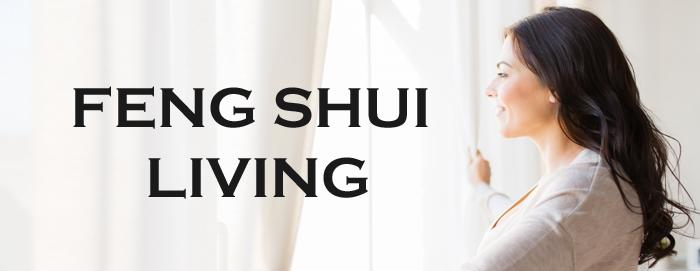 Feng Shui Living with Carol  Partridge